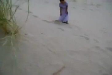 Fille joue avec mignon petit renard du désert