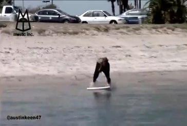 Utiliser le sillage d'un bateau pour surfer