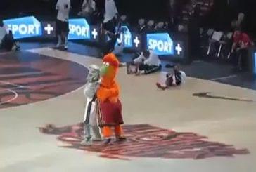 Combat de mascottes de Basket
