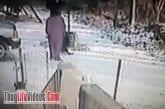 Une femme essaie de chasser un chat pas sympa